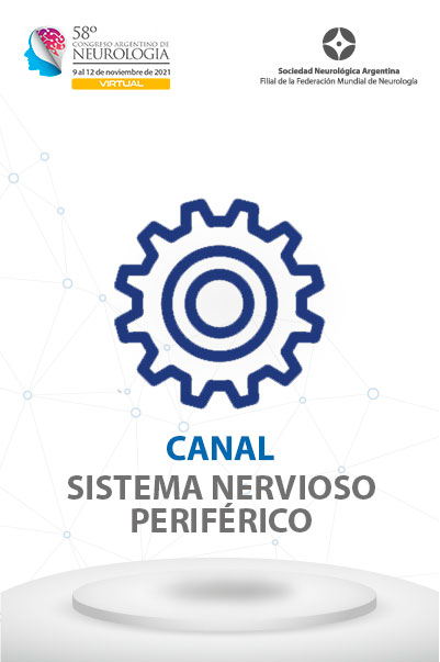 car_sistema-nervioso-periferico